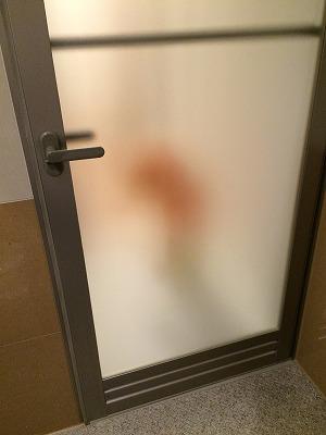 ドアの透け具合(中から外)