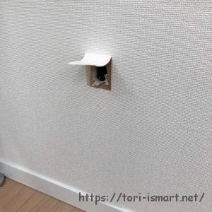 調査のために開けた壁の穴