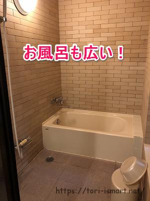 入鹿の里MUSICA 部屋風呂