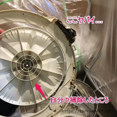洗濯機分解洗浄_掃除前の黒カビ